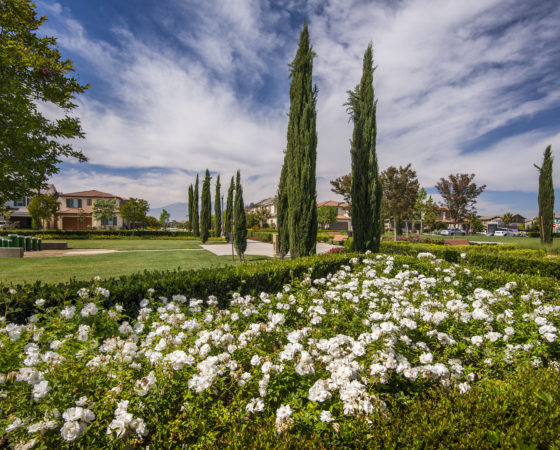 Chino Master Planned Community