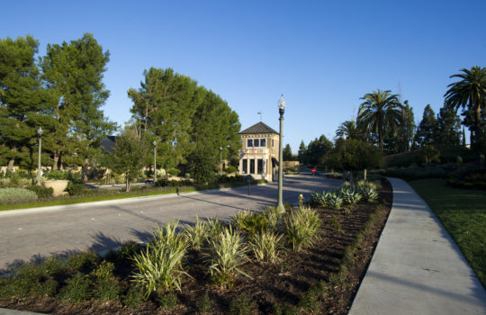 The Benefits of Mulch in the Landscape