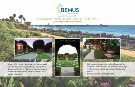 Bemus nominated 2018 Family Owned Business of the Year