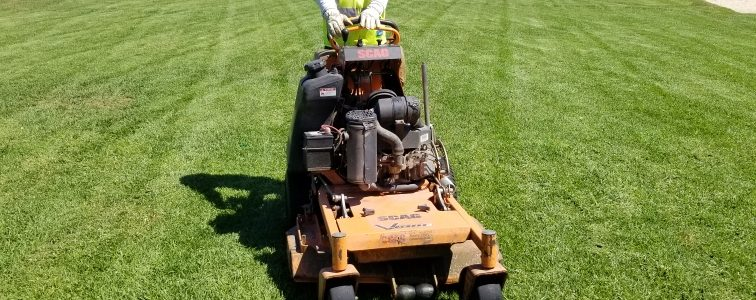 The Benefits of Mulching Mowers