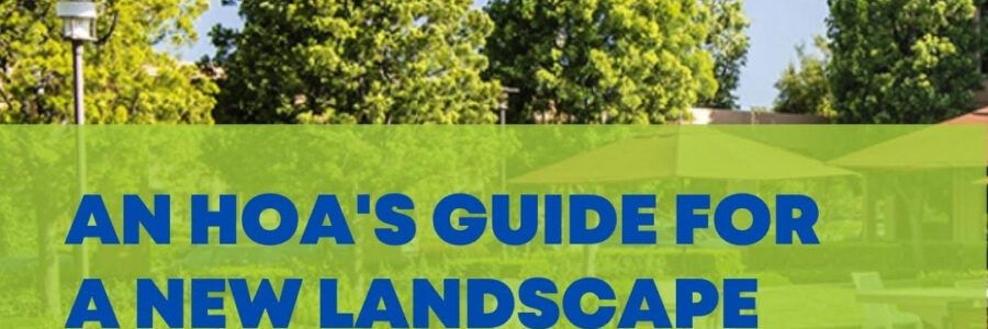An HOA's Guide on What to Expect When Partnering with Bemus Landscape